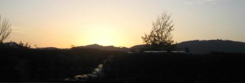 Solnedgang (tatt i fart)