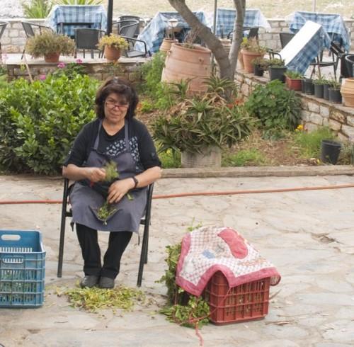 Gamlemor renser kål